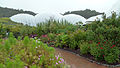 The Zigzag @ Eden Project (9757568476).jpg