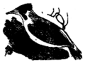 The cuckoo (bod3476) (cropped).png