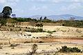 The semi-arid terrain of Machakos (5112045372).jpg