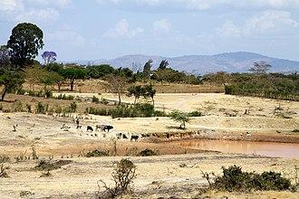 Machakos - The semi-arid terrain of Machakos.