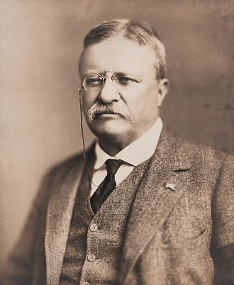 Veterans of Foreign Wars - Image: Theodore Roosevelt in 1918