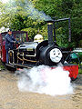 Thomas tank engine day Bressingham.jpg