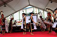 Tonnerres de Brest 2012 Dayak 007.jpg