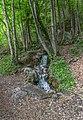 Tour Sans Venin Cascade Diagonale.jpg