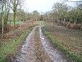 Track to Todenham - geograph.org.uk - 1619876.jpg