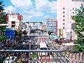 Ttown of Utsunomiya 宇都宮の町並み - panoramio.jpg