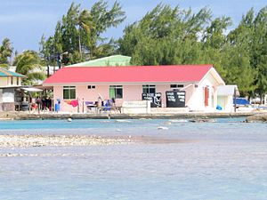 Tuamotus - Typical waterside view in the Tuamotus