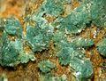 Turquoise-132884.jpg