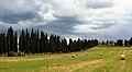 Tuscan Landscape 5.JPG