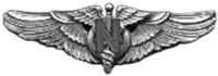 Alas de enfermera de vuelo de la USAAF.png