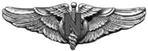 Flight Nurse Badge - Army Air Force Flight Nurse Badge (WW II)