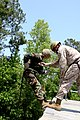 US Navy 090602-M-2715M-012 A midshipman repels during a training exercise on Camp Lejeune, N.C.jpg