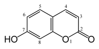 Umbelliferone structure.png