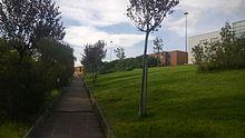 Vista di un viale del campus