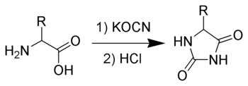 The Urech hydantoin synthesis