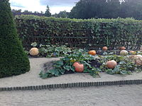 Vegetables de Chenonceau 2008.jpg