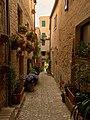 Via di Torre di Palme.jpg
