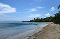 Vieques playa.jpg