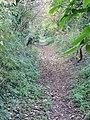 View along a footpath near Heronden - geograph.org.uk - 602850.jpg