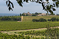 View from Château La Nerthe, France.jpg