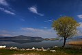 View from Mikrolimni, small Prespa Lake.jpg