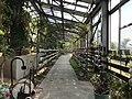View in greenhouse of Innoshima Flower Center 2.jpg