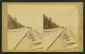 View of the lake shore, from Robert N. Dennis collection of stereoscopic views 2.png
