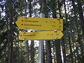 WW-Zell am See-028.JPG