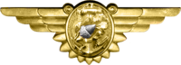 WWII Naval Flight Nurse Insignia.png