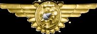Insignia de enfermera de vuelo naval de la Segunda Guerra Mundial.png