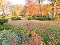 W jesiennym Parku I..JPG