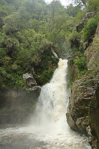 Wainui Falls - Image: Wainui Falls in full flow