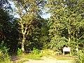 Waldrand bei Zeiskam - geo.hlipp.de - 26299.jpg