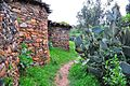 Walking in Tigray (8444692066).jpg