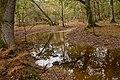 Warwickslade Cutting, restored stream - geograph.org.uk - 1570779.jpg