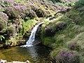 Waterfall, Blackden Brook - geograph.org.uk - 217998.jpg