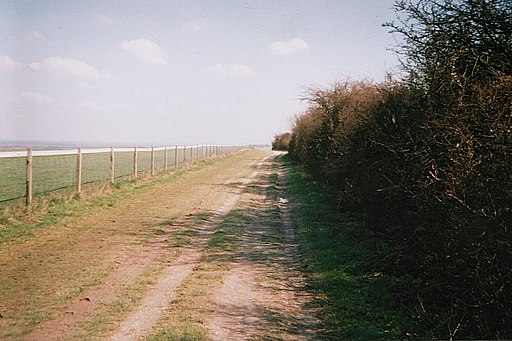 Watership Down Field Path