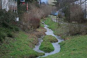 Wettingen - Gottesgraben stream