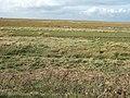 Where's the sea ^ - geograph.org.uk - 1559098.jpg