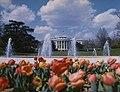 White House Spring 1975 F.jpg