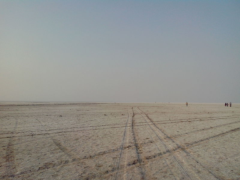 चित्र:White Rann of Kutch - Landscape.jpeg