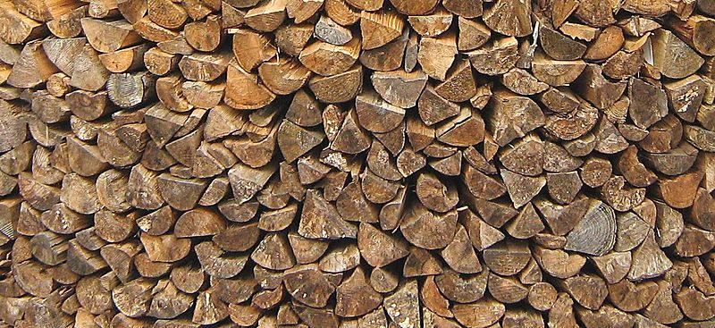 File:Wood in a woodpile.JPG