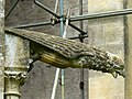 Woodchester Mansion gargoyle, near Nympsfield - geograph.org.uk - 931862.jpg