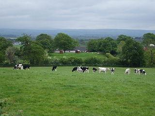 Thornby, Cumbria village in United Kingdom