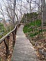 Woodland path Wave Hill 2.jpg