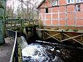 Wrestedt - Wassermühle.jpg