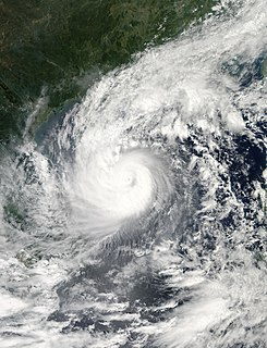 Typhoon Wutip (2013)