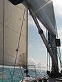 Yacht mainsail and jib, boom, down-haul,.jpg