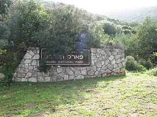 Mount Carmel National Park National park in Israel