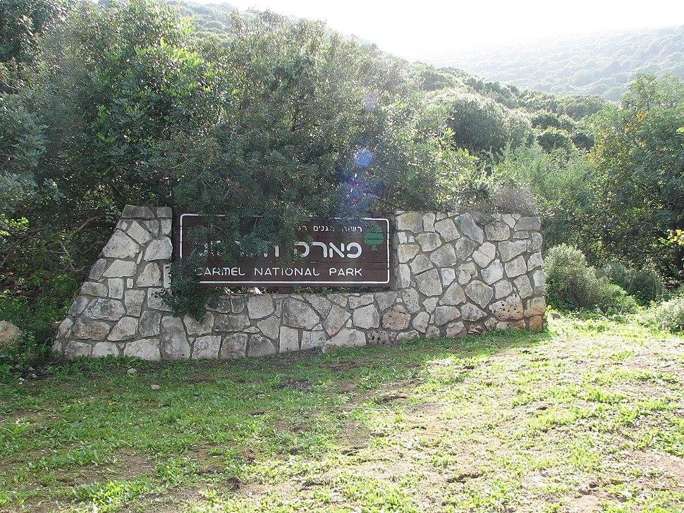 Yagur – Nesher, the Green Path – Mount Carmel 122